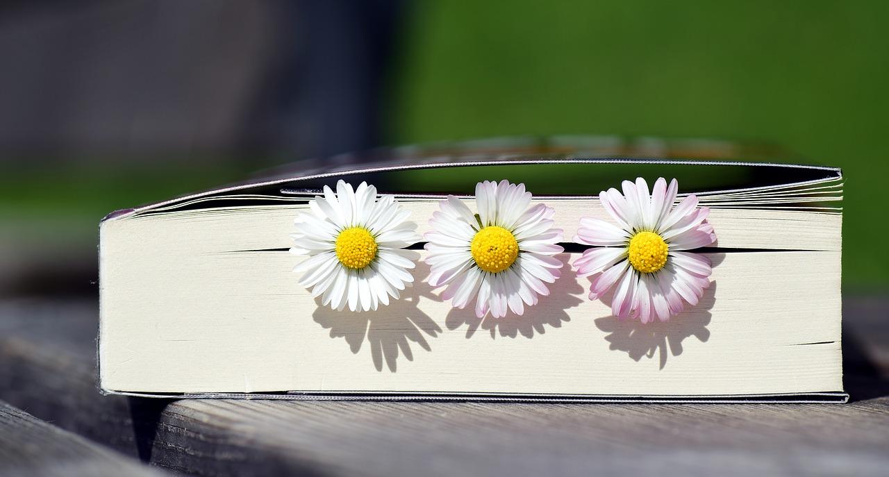 Het boek dat je in je hart raakt en je niet meer loslaat