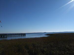 In Charleston, South Carolina is de afwisseling tussen rust en gezellige drukte onlosmakelijk met elkaar verbonden